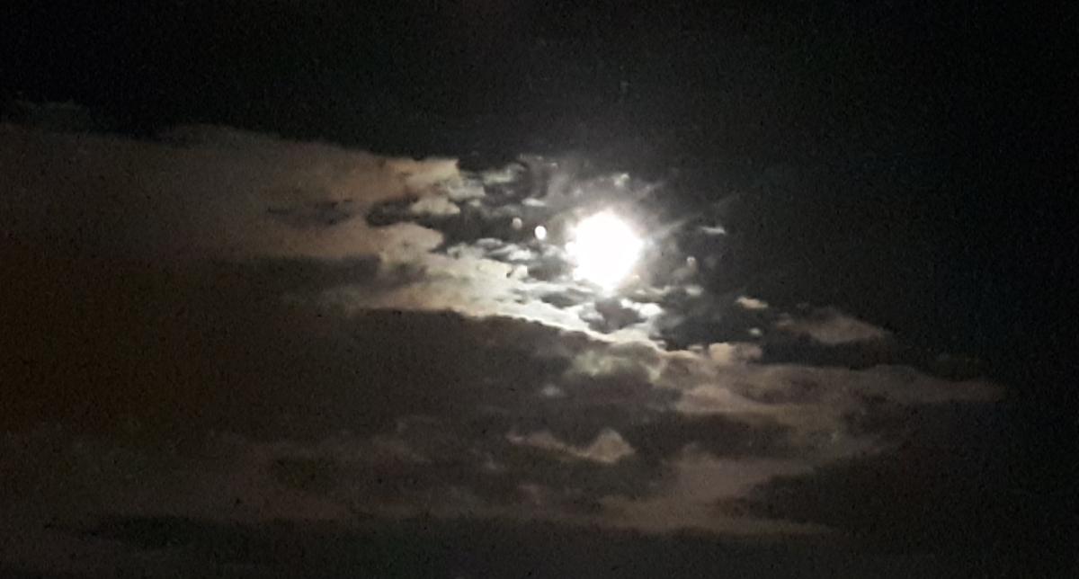 The Same Moon by Samantha Harris