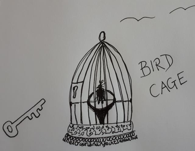 BirdCageGraphic